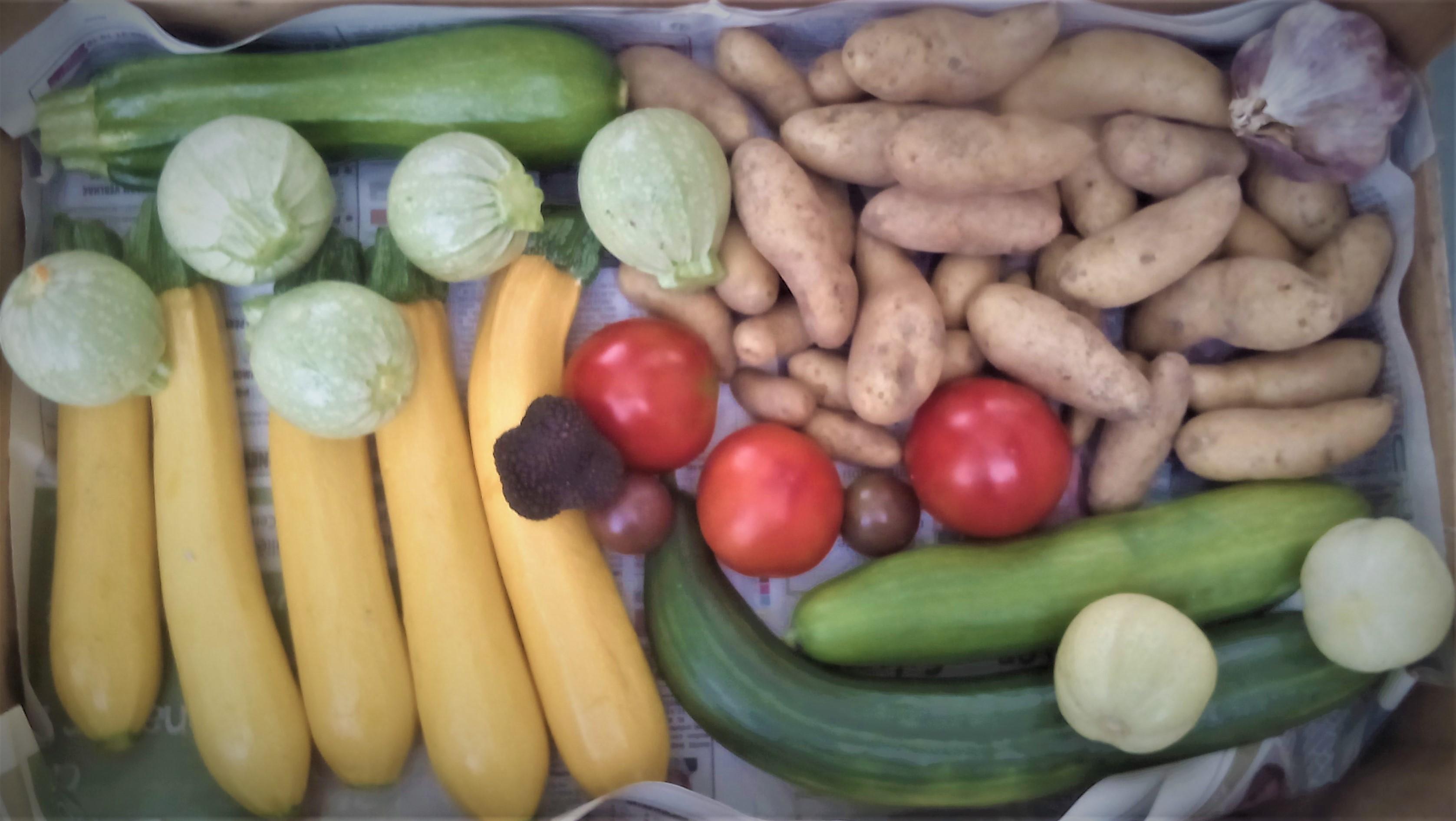 Cagette de légumes & truffe