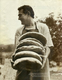 Tourtes de pain