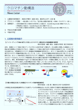 クロマチン動構造News Letter No.12を掲載しました
