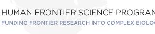 Human Frontier Science Programによる共同研究を開始しました