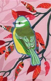 Bird2_edited_edited_edited_edited.png