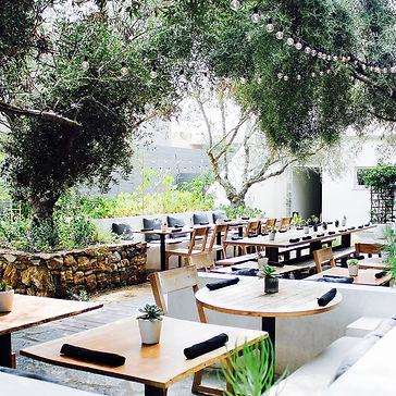 Plant Food and Wine LA