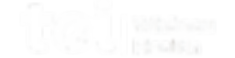 Toi logo white.png