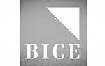 BICE_edited.jpg