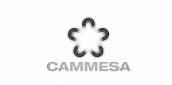Cammesa_edited.jpeg