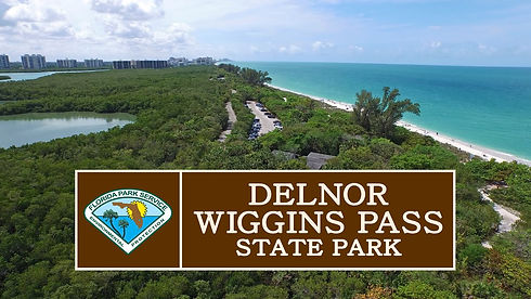 delnor wiggins pass .jpg