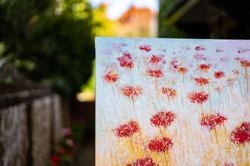 Rosemary Abrahams Poppy Field