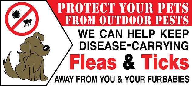 flea-&-tick---for-website-home.jpg