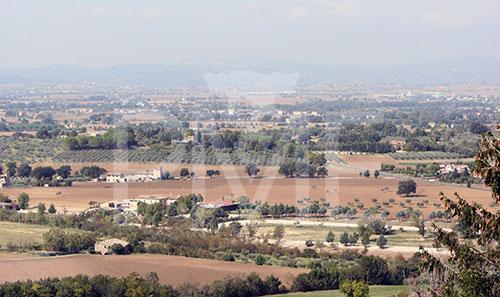 landscape7