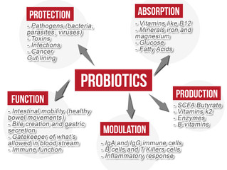 Probiotics History and Benefits