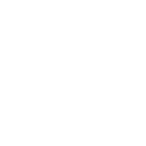 White logo - transparent background