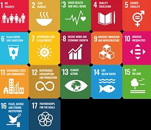 SDG'S .png