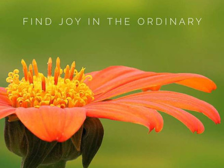 How to find joy in the ordinary