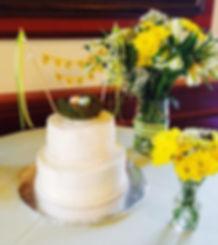 Shower Cake | Moneta Moments