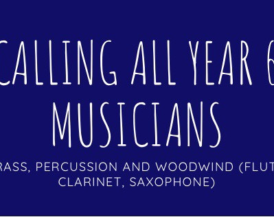 Calling all Year 6 BRASS, PERCUSSION and WOODWIND (Flute, Clarinet, saxophone) students!!!!!