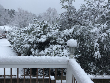 From our back deck