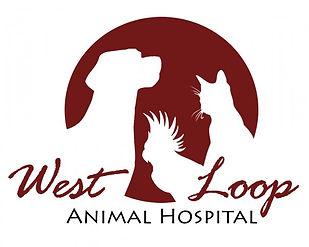 West Loop Animal Hospital.jpg