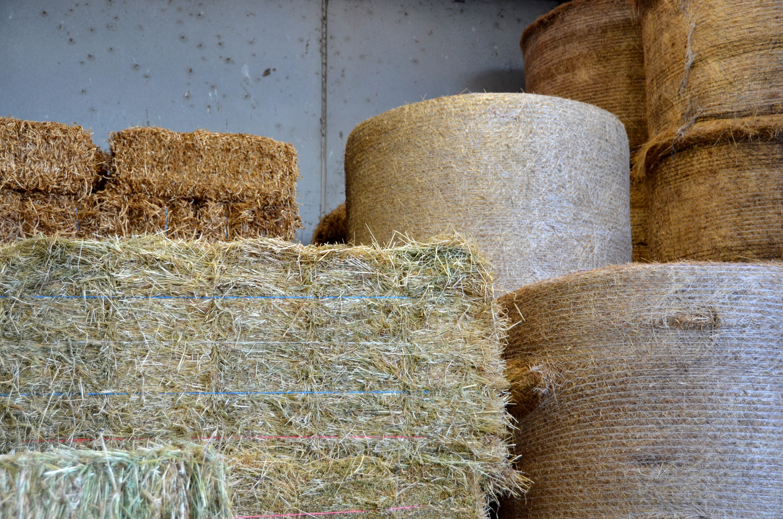 Hay Shed and Round Bales