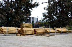 Pine Posts