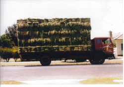 Old PPS Truck with hay
