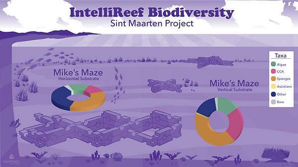 IntelliReef_Infographic_SintMaarten.png