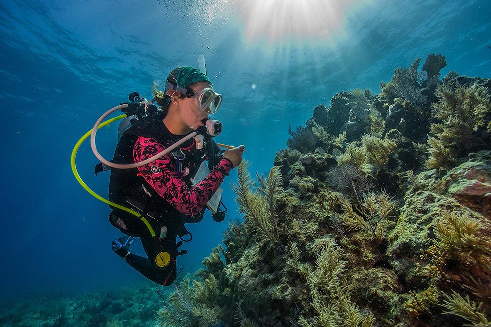 Gift A Reef.jpg