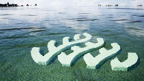 Reef Life- Dive Reef Logo.png