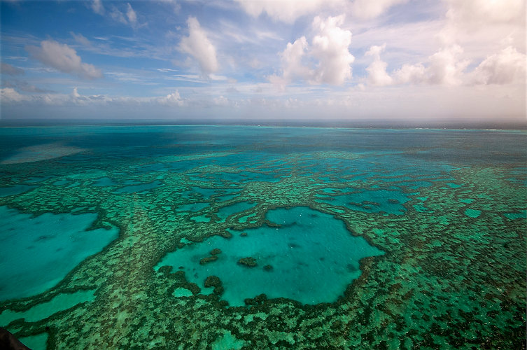 Great Barrier Reef from above.jpg