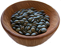 Beans2.png