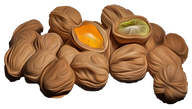 Nuts Fruit.png