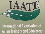 IAATE Logo_edited.jpg