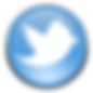 twitter-icon (1).png