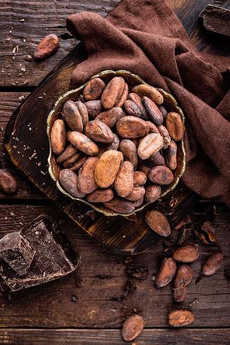 CacaoBean.jpeg