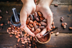 Cacao Beans Hands