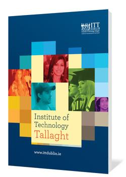 Tallaght report.jpg