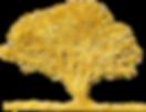 argan-tree-final[1].png