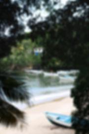 trinidad (7 of 9).jpg