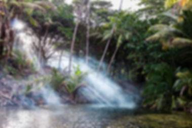 trinidad (9 of 9).jpg