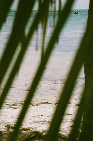 Film (10 of 32).jpg