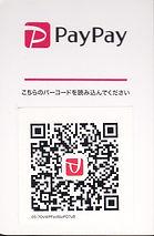 Paypay_0001_edited.jpg