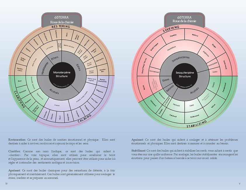roue chimie 2.jpg