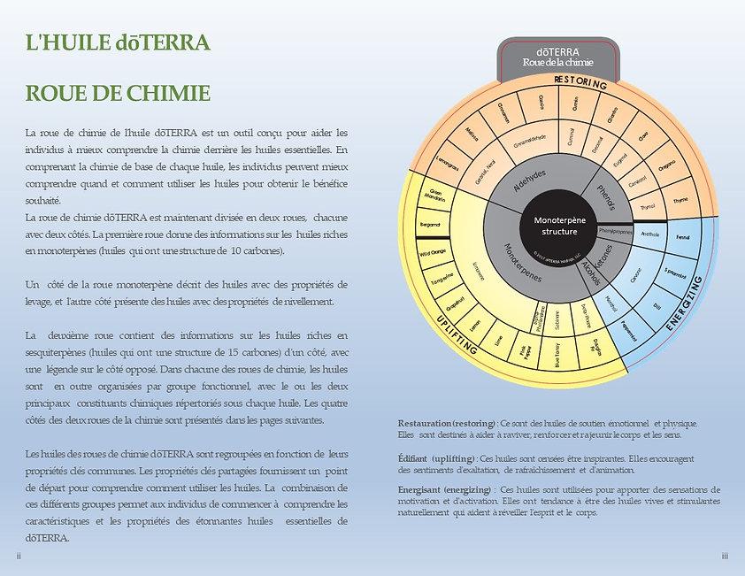 roue chimie 1.jpg