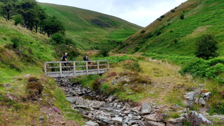 GMTBIKING photo of Black mountain bike trail