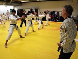 Vauhdikasta menoa Hapkido-Junioreiden leirillä Liikuntamyllyssä!