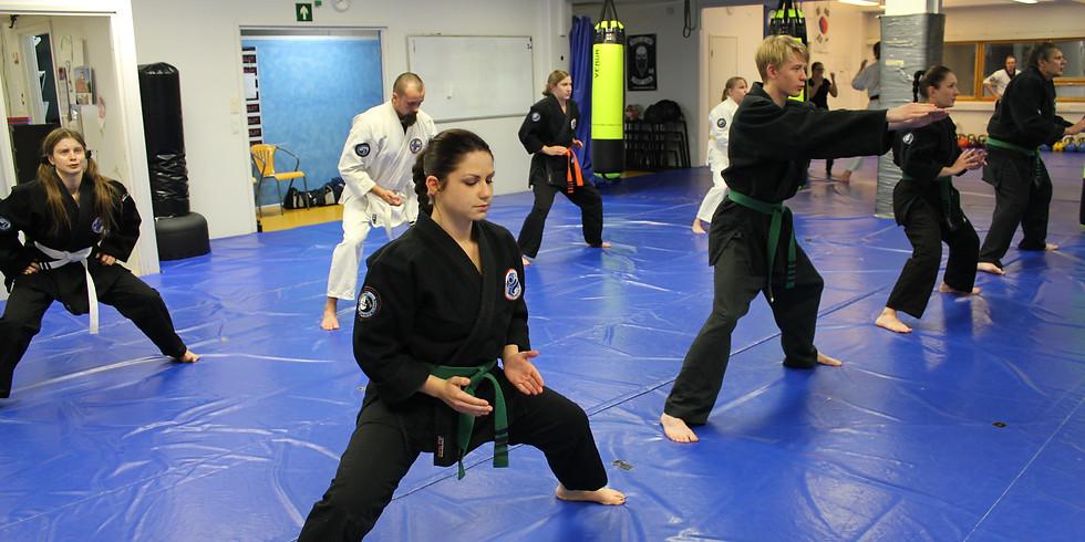 Nuorten Hapkido Plus ryhmä