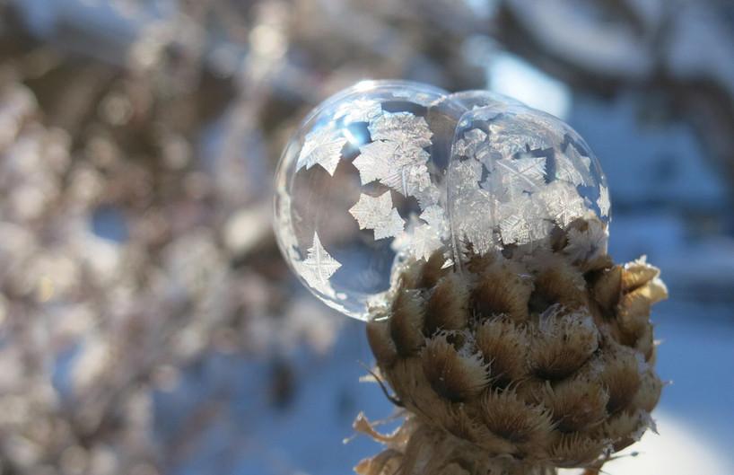 iceglobe-scaled.jpg