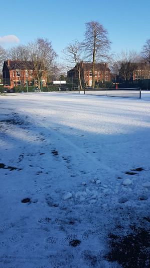 Snow tennis.jpg