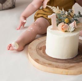 One Year Cake Smash.jpg