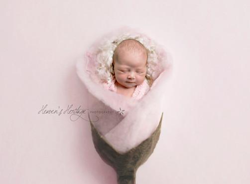 Perth Newborn