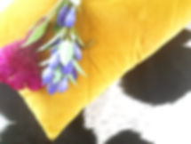 Cushion, rug & flowers.jpg